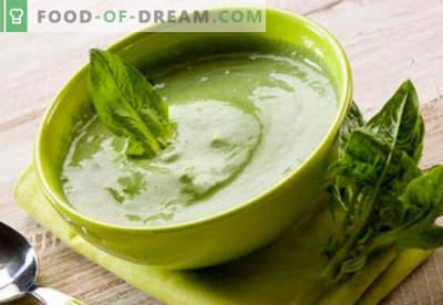 Spinatpüree - die besten Rezepte. Wie man richtig und köstlich pürierten Spinat kocht.