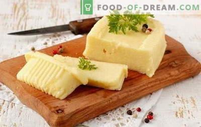 Kako izdelati sir iz mleka z lastnimi rokami: mehka in trda. Recepti za sir iz mleka doma in v tehnologiji
