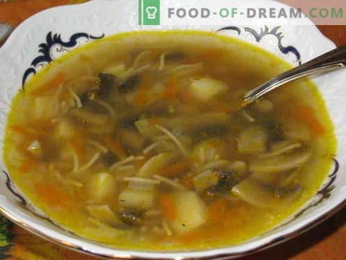 Zuppa di funghi - le migliori ricette. Come cucinare correttamente e gustoso zuppa di funghi.