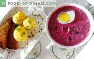 Hladilnik sladkorne pese: recept za poletno juho po korakih. Preprosti in osvežilni recepti iz svežih in vloženih rezervoarjev sladkorne pese