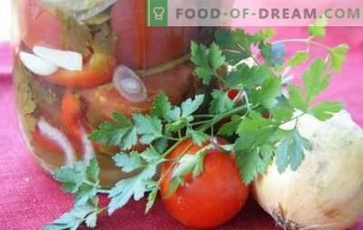 Tomātu salāti ar sīpoliem ziemai: skaists salds un pikants sastāvs. Labākās salātu receptes ziemai ar tomātiem un sīpoliem