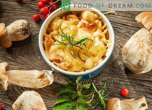 Piščančja julienne z gobami - najboljši recepti. Kako kuhati piščanca julienne.