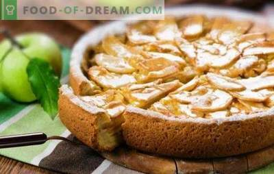 Nežna šarlota s kislo smetano in jabolki je poslastica celotne družine. Kako narediti charlotte s kislo smetano in jabolka iz suhega kruha