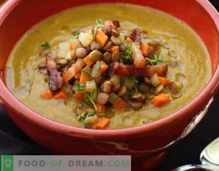Juha iz leče - najboljši recepti. Kako pravilno in okusno kuhati leče juho.