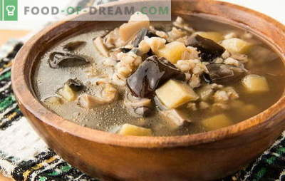 Gobova juha iz zamrznjenih gob - aroma jeseni! Najboljši recepti gobove juhe iz zamrznjenih gob