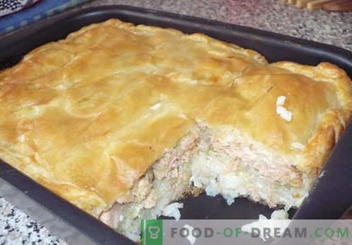 Pite s filejem z zeljem, krompirjem, kefirjem in počasnim štedilnikom. Najboljši recepti jelly pite.