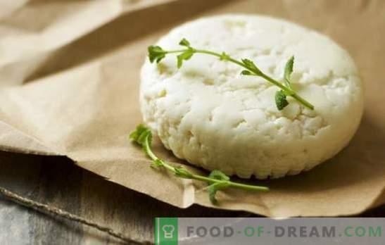 Cómo hacer queso de cabra en casa: recetas sencillas. Cómo hacer queso de cabra: recomendaciones